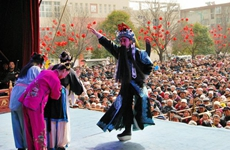 杨凌春节接待游客近20万人次 同比增长35.6%