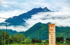 西安:构建秦岭北麓生态环境四级网格化管理平台