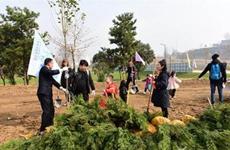 关爱大美秦岭 陕西全民义务植树护绿联动行动启动