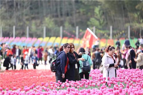 西九华山:百花知春不久归 万般红紫斗芳菲