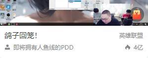 PDD回归直播首秀达4亿人气 斗鱼服务器被挤炸