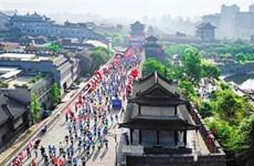 2019城墙国际马拉松赛明日开赛 赛事亮点丰富