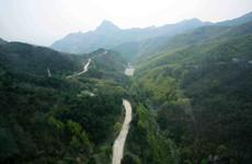 去年陕西植被固碳释氧量创历史新高 价值3992亿元