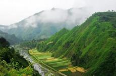 陕西四地入选森林体验和森林养生国家重点建设基地
