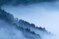 庐山云雾缭绕 宛如仙境