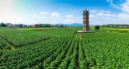 韶关南雄市新增2处省级文物保护单位 现共有15处