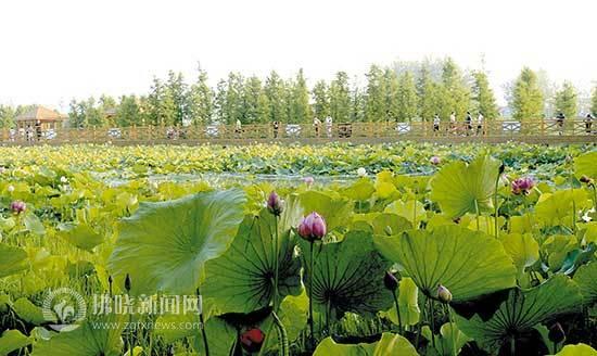 http://www.ahxinwen.com.cn/anhuifangchan/45662.html