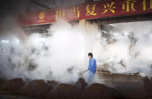 """喜讯!酒祖杜康荣获""""中国糖酒食品产业标志品牌""""大奖"""