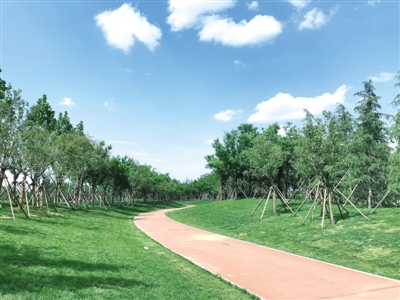 郑州市奋力争创国家生态园林城市