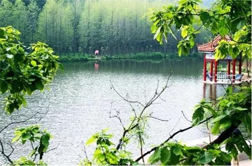河南风景区观山