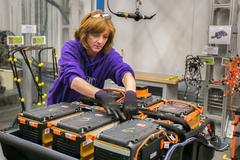 国务院暂时容许自贸区外资独资生产电池
