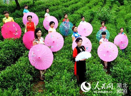 在花海,在山林,在竹林,在农家,在小溪,在茶园,到处都留下了旗袍模特们