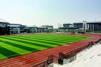 青岛市城阳十七中学的图片