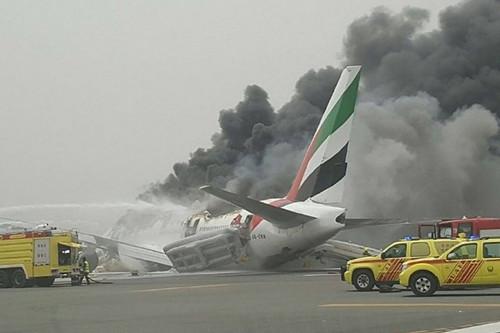 飞机迫降后起火,浓烟冲天(网页截图)