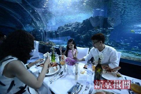 天津海昌极地海洋馆海底餐厅,举行了一场独特的海底美食音乐会.