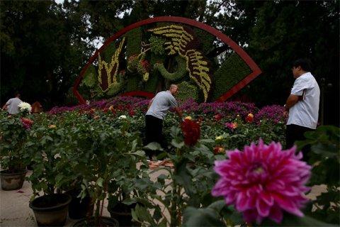 中山公园,工作人员正在布置国庆花坛.新京报记者 薛珺 摄