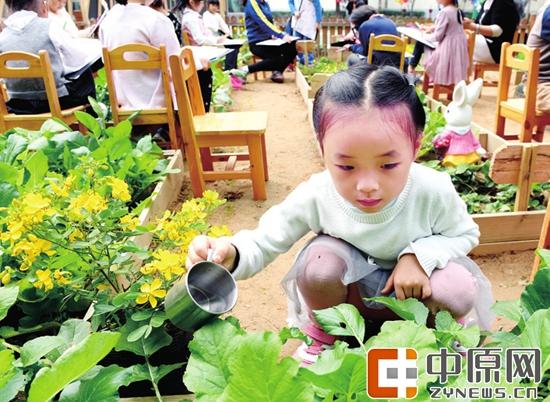 """幼儿园里的""""蔬菜花园"""""""