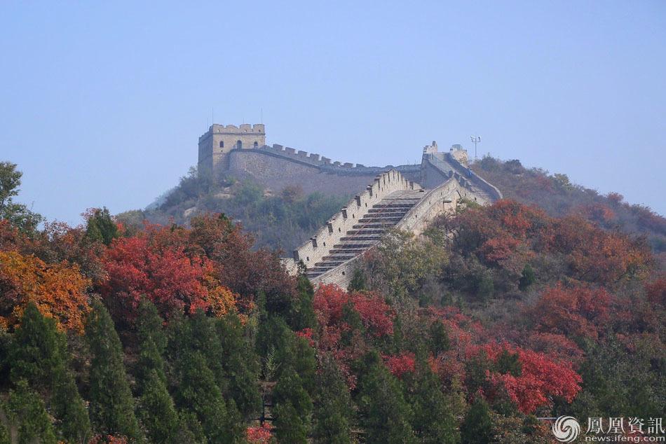 位于北京八达岭国家森林公园的红叶岭风景区进入最佳观赏期,吸引众多