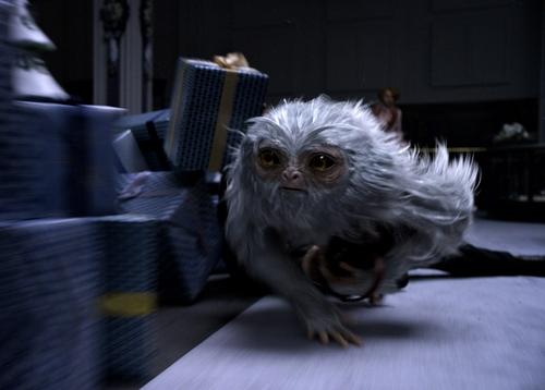 《神奇动物在哪里》今日上映 7个关键词让非哈迷也能看爽