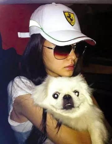 盘点那些养可爱宠物的明星们_娱乐频道_凤凰网