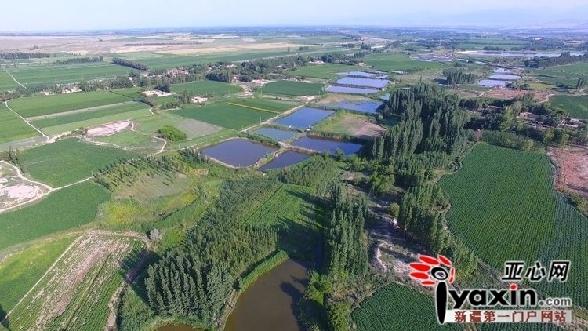 吉木萨尔县北庭镇发展特色乡村旅游 构建全域旅游大格局 组图