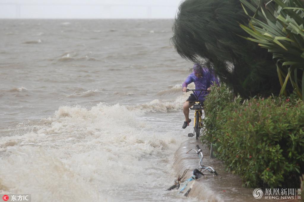 在强台风影响深圳期间,深圳湾海边风浪明显增大.