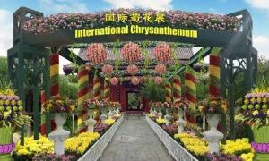 中国(开封)第六届国际菊花展