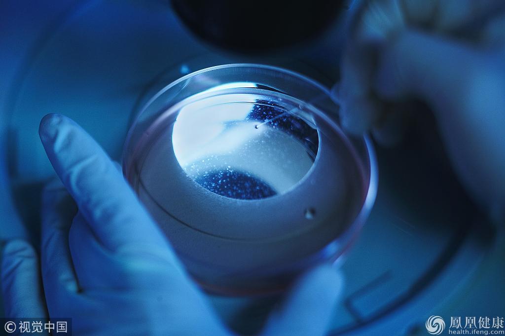 第二批72个干细胞临床研究备案机构公布,广东10家入选