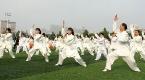 第十届中国·沧州国际武术节九月十九日开幕