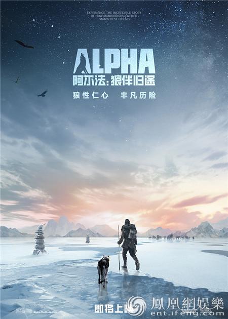 《阿尔法:狼伴归途》海报预告双发 开启人狼为伴历险