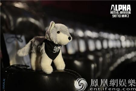 《阿尔法:狼伴归途》首映大咖云集 故事感动观众