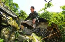 2019年陕西农作物种质资源普查启动