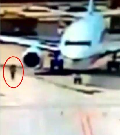 飞机刚降落还在滑行,这名女子竟开逃生门跳机跑了
