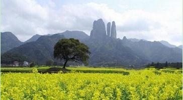 宁波旅游网;衢州;江郎山;风景名胜区;浙江旅游景点