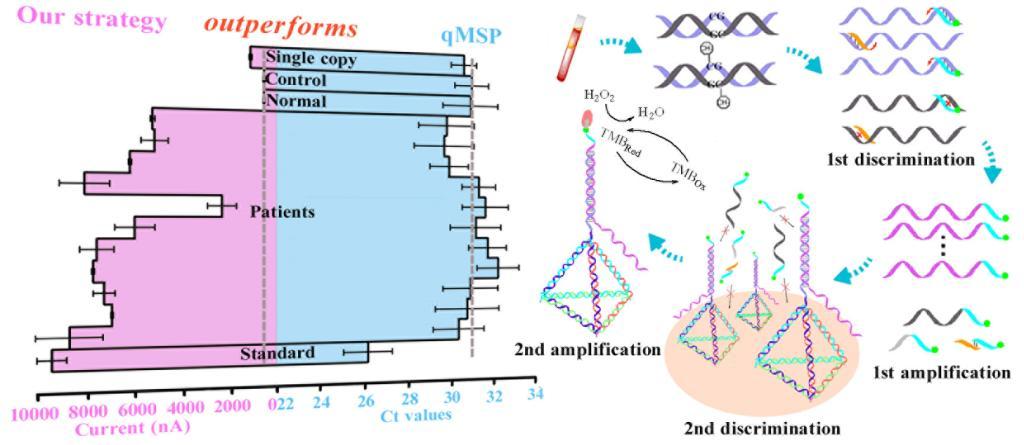 西安交大研究人员在生物分析化学与纳米生物技