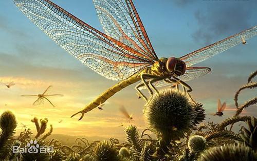 史前巨兽什么样——1米宽的蜻蜓,5米高的大象