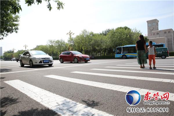 长达5米多的大蟒蛇过马路 司机纷纷停车避让!