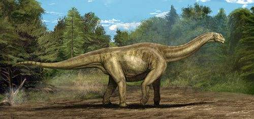 重磅!贵州茅台镇发现侏罗纪早期大型恐龙足迹群-科技传媒网