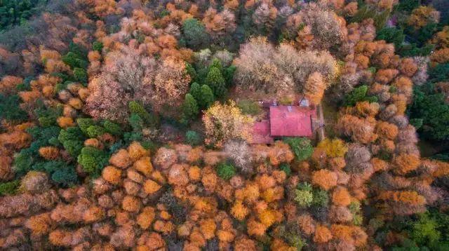 《那年花开》外景地是被遗忘的千年古城 藏着最江南的诗意水乡