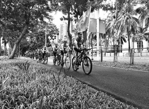中国侨网骑行爱好者在进行国庆7天环岛游。(徐伟摄)