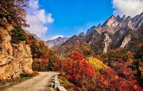 金秋时节老界岭中原地区欣赏红叶的绝佳好去处
