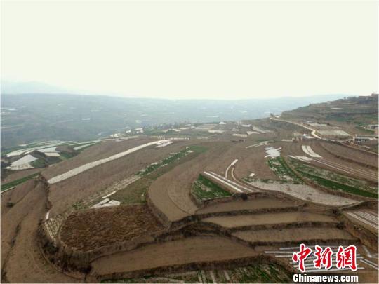中国十余载考古研究解秦人系列历史谜团