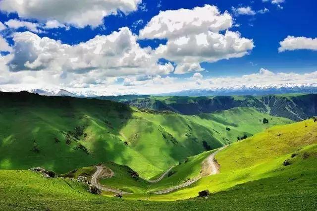 新疆天山の画像 p1_19