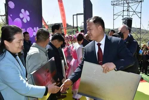 """""""花开金城·果乡之约""""中国首届苹果花节在灵宝寺河山开幕"""