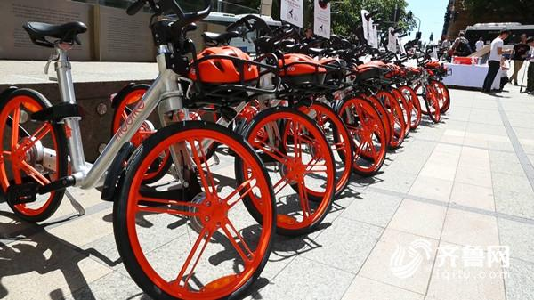 共享单车11.JPG