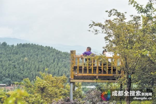 登山健身+森林康养 全省首条登山健身步道初显形_登山|健身