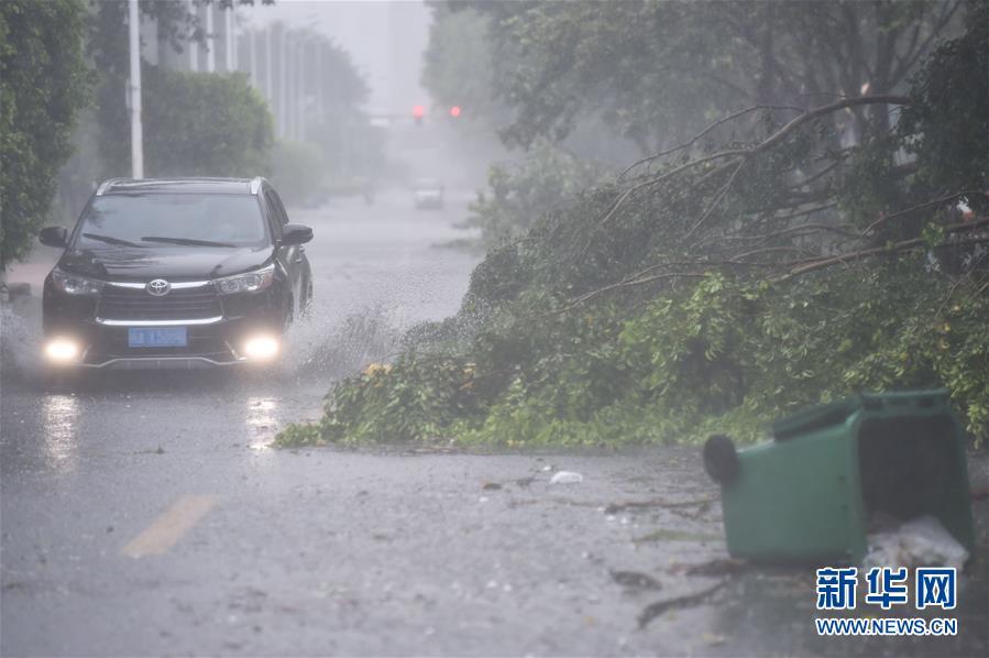 """(关注""""玛莉亚"""")(1)台风影响福州市区"""