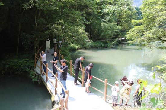 宜昌又添避暑好去处 中亚楠木林大峡谷景区一期开放