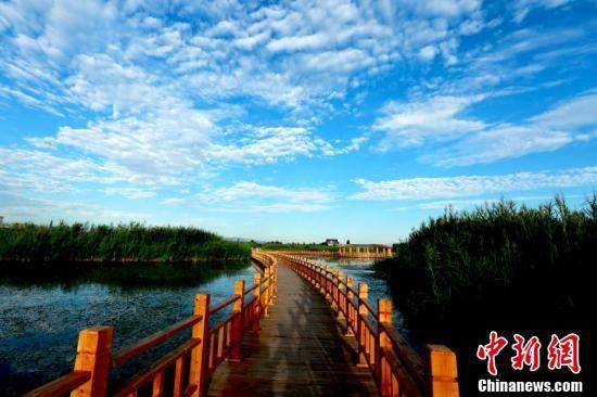早晨的湿地,天蓝水清,风光旖旎。 陈礼摄