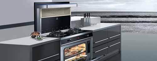 新房装修季 智能化厨电走俏 集成灶10大品牌首选欧琳